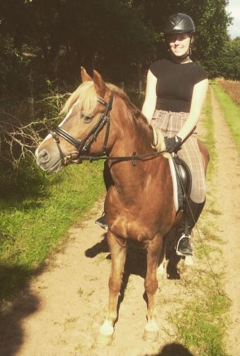 Horse riding with welsh pony in the netherlands