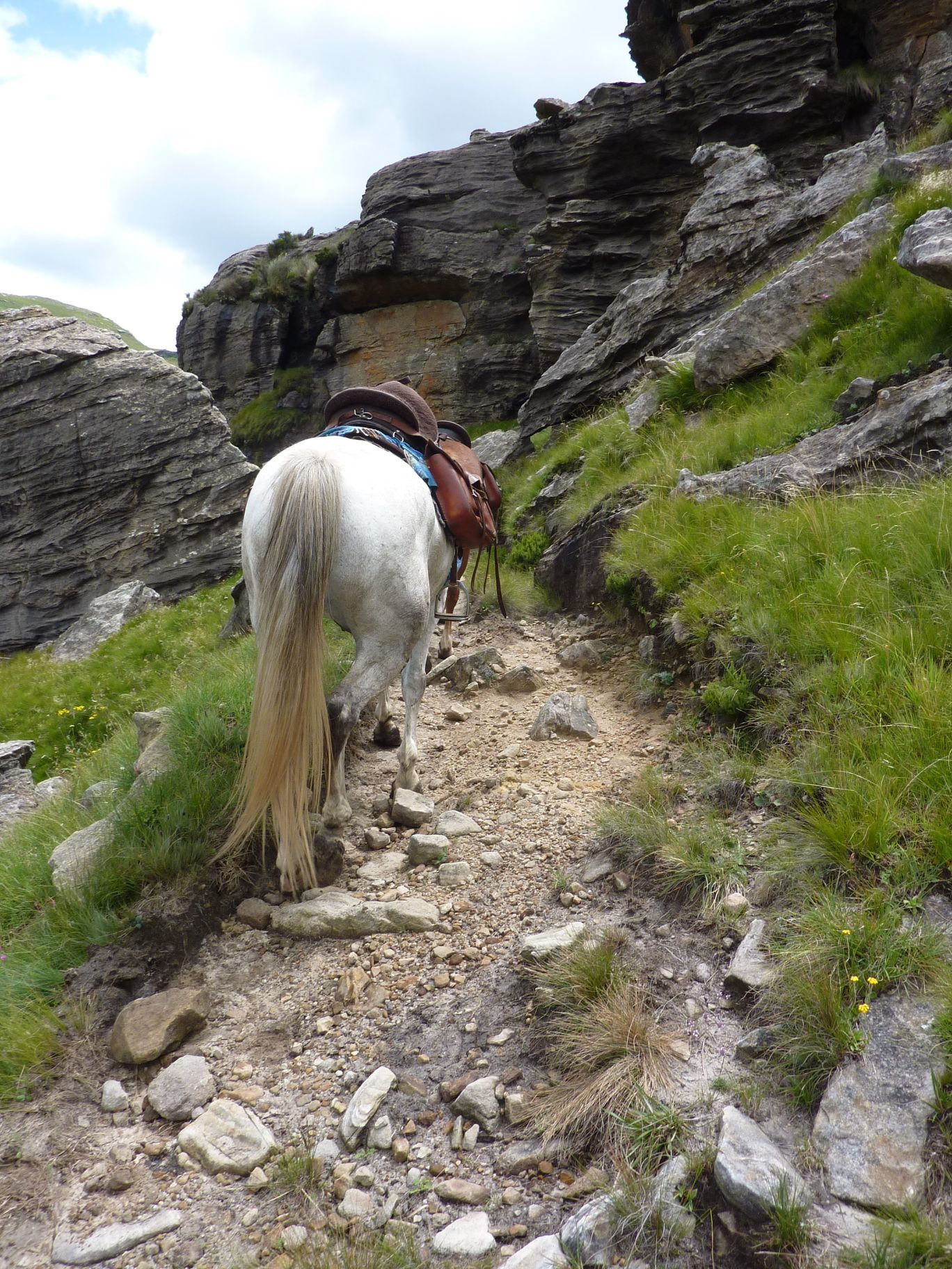 Horse climbing mountains in sehlabathebe national park lesotho