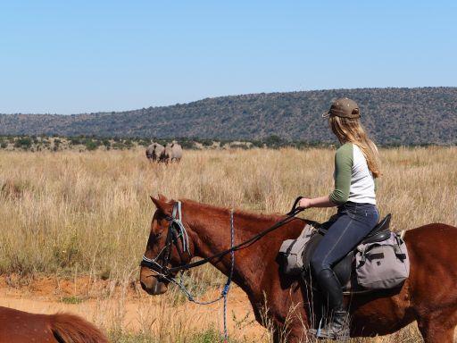 White rhino sighting while on horseback riding safari inSouth Africa