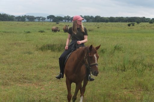 Horse riding in big 5 area with two rhinos