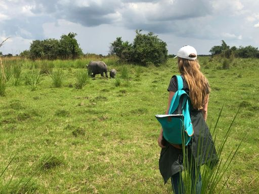 Rhino sighting while volunteering inUganda