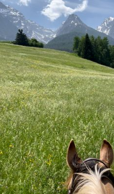 Picture made with DJI gimbal while horse riding in the mountains in switzerland