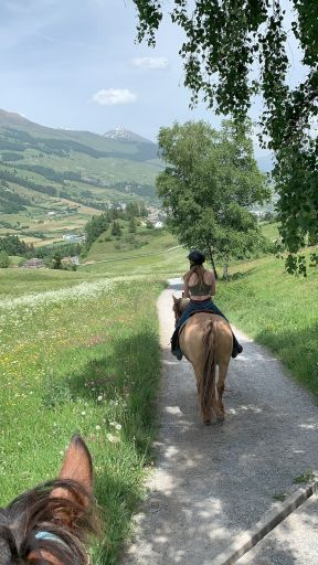 Horse riding trail in the mountains in Switzerland