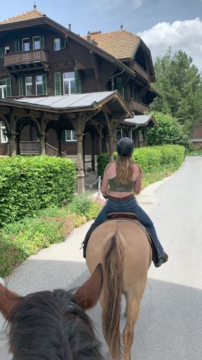Horse riding on Criollo horse in a village in switzerland