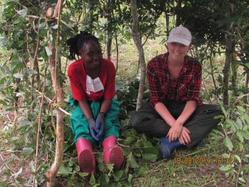 building a shelter in the forest in uganda