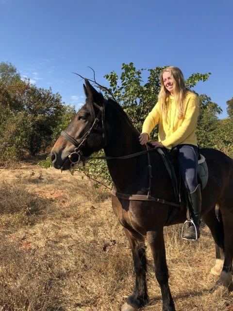 Horse riding in victoria falls national park zimbabwe on brown irish cob horse