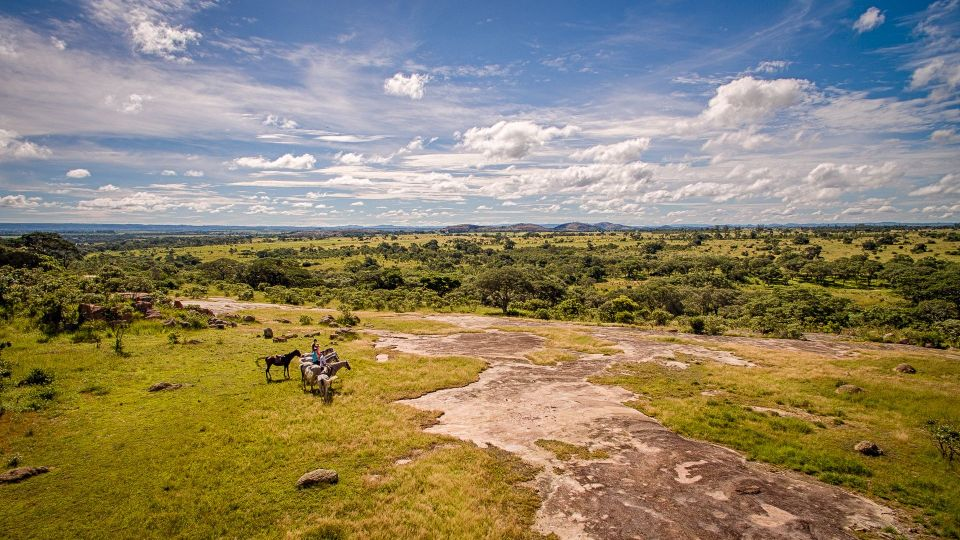Drone shot of group of horse riders in wildlife conservancy Imire in Zimbabwe