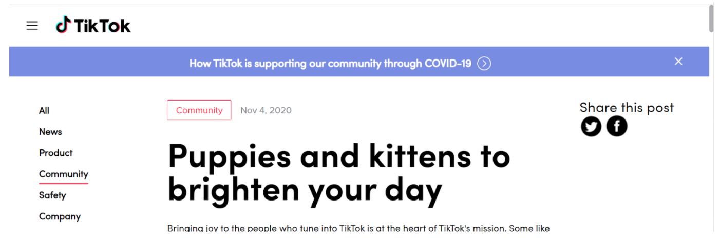 TikTok headline