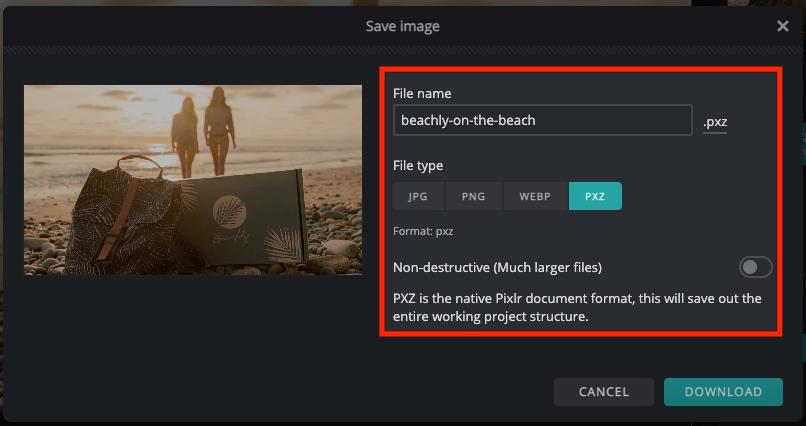 Pixler Save Image window