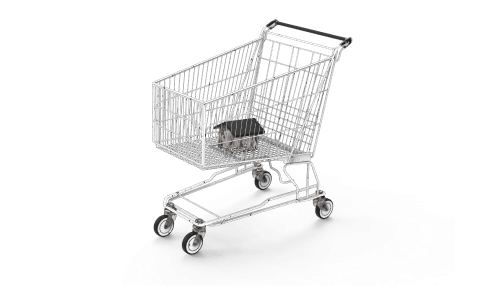 A shopping cart with a tiny house inside it