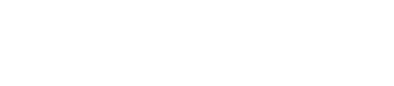 femforce shoots logo