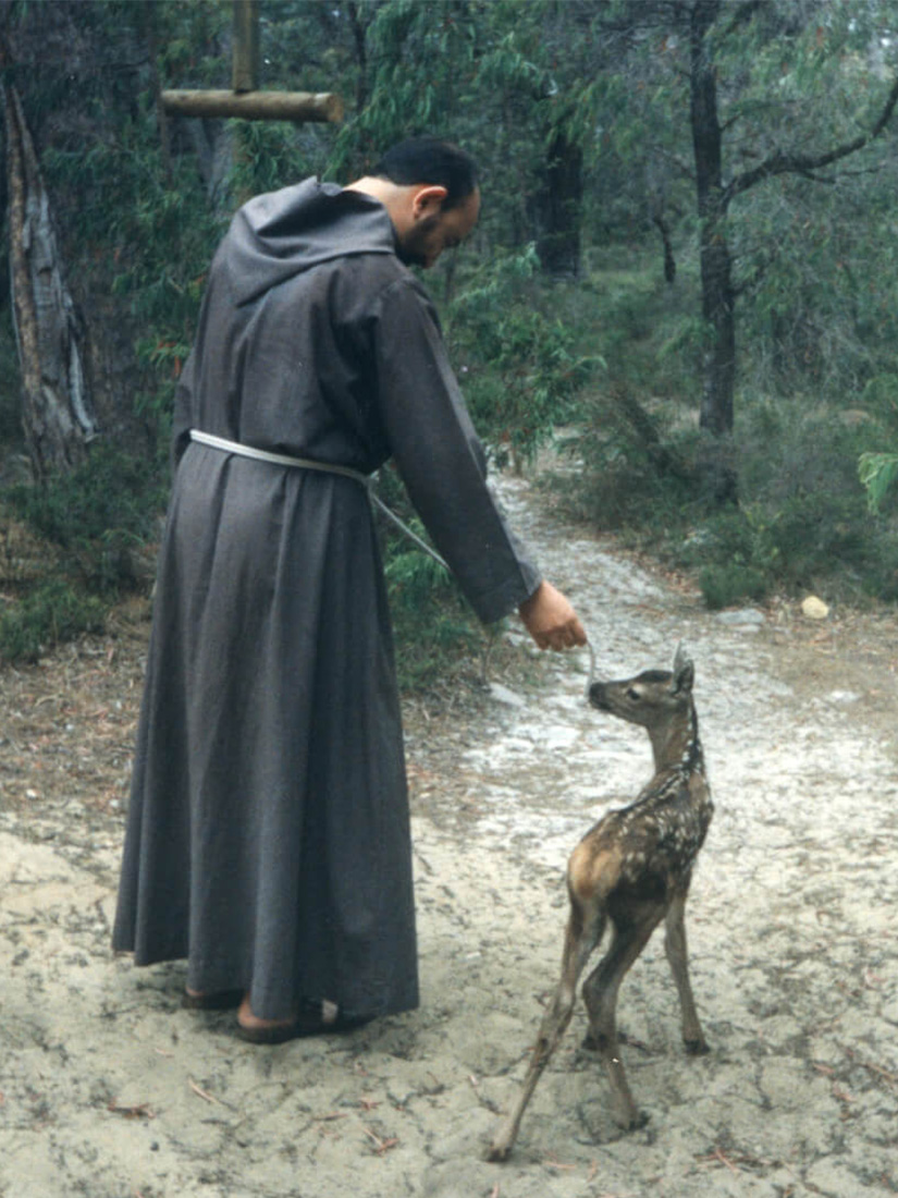 A friar walking through the wood with a deer