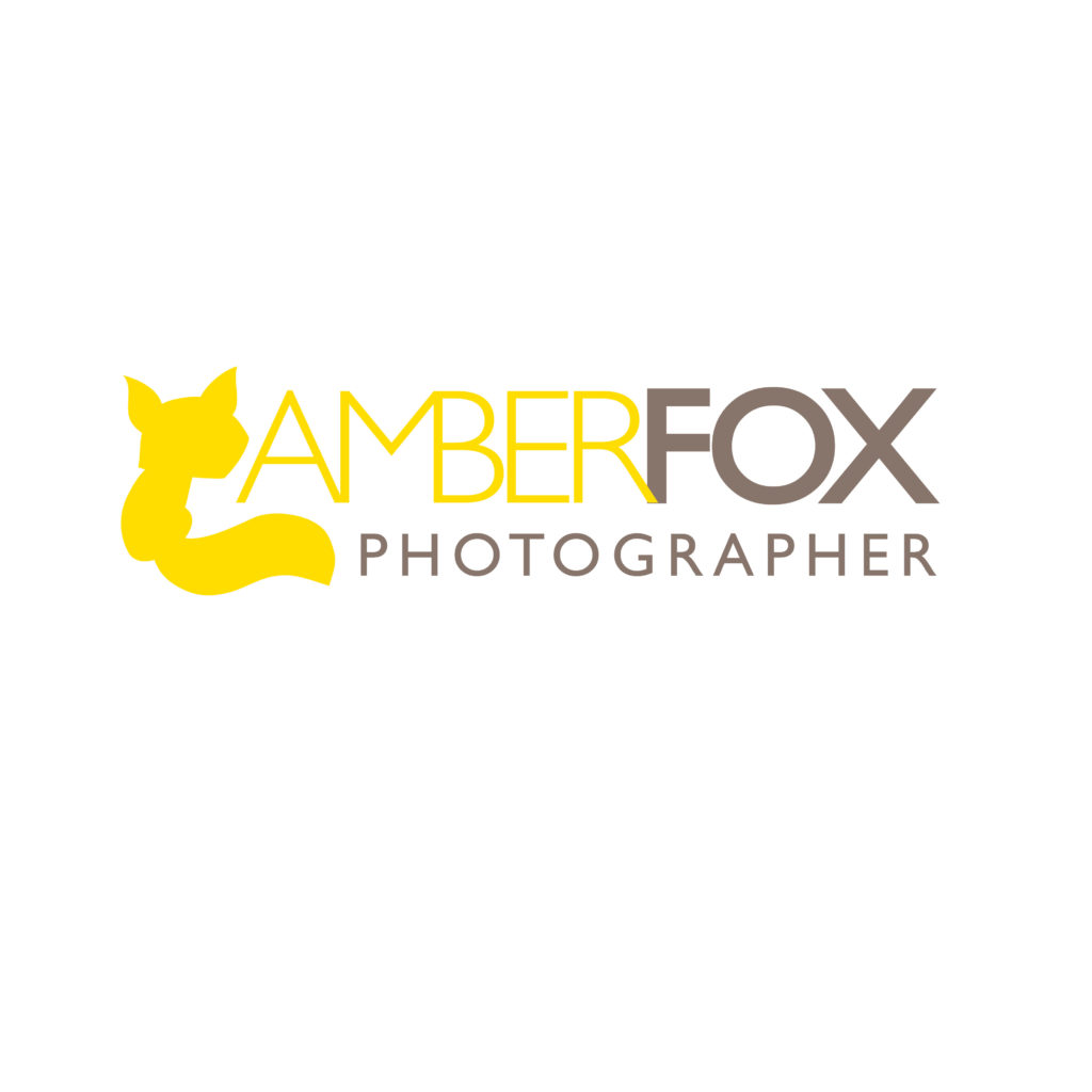 Amber Fox Logo
