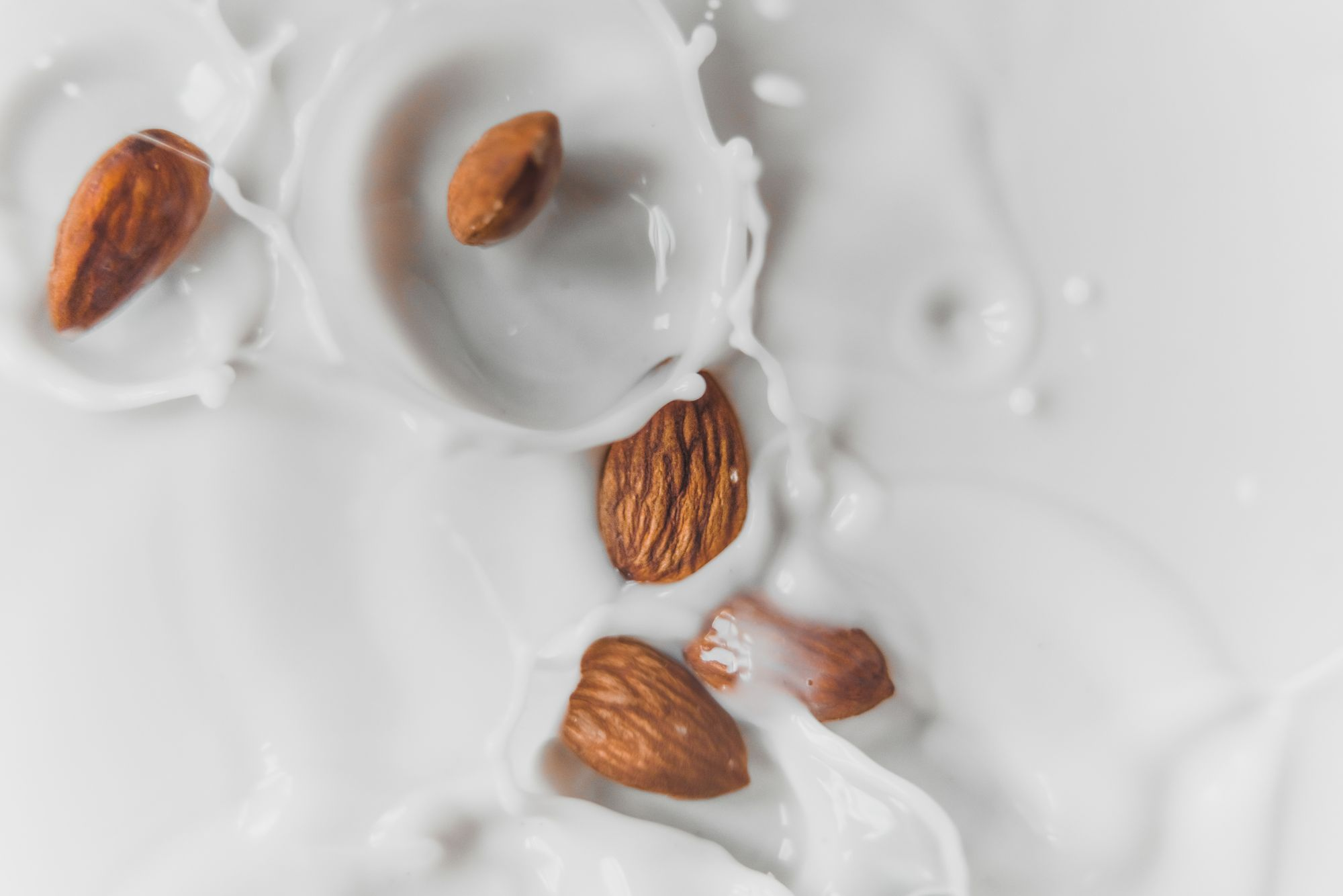 The Almond Milk and Avocado Dilemma