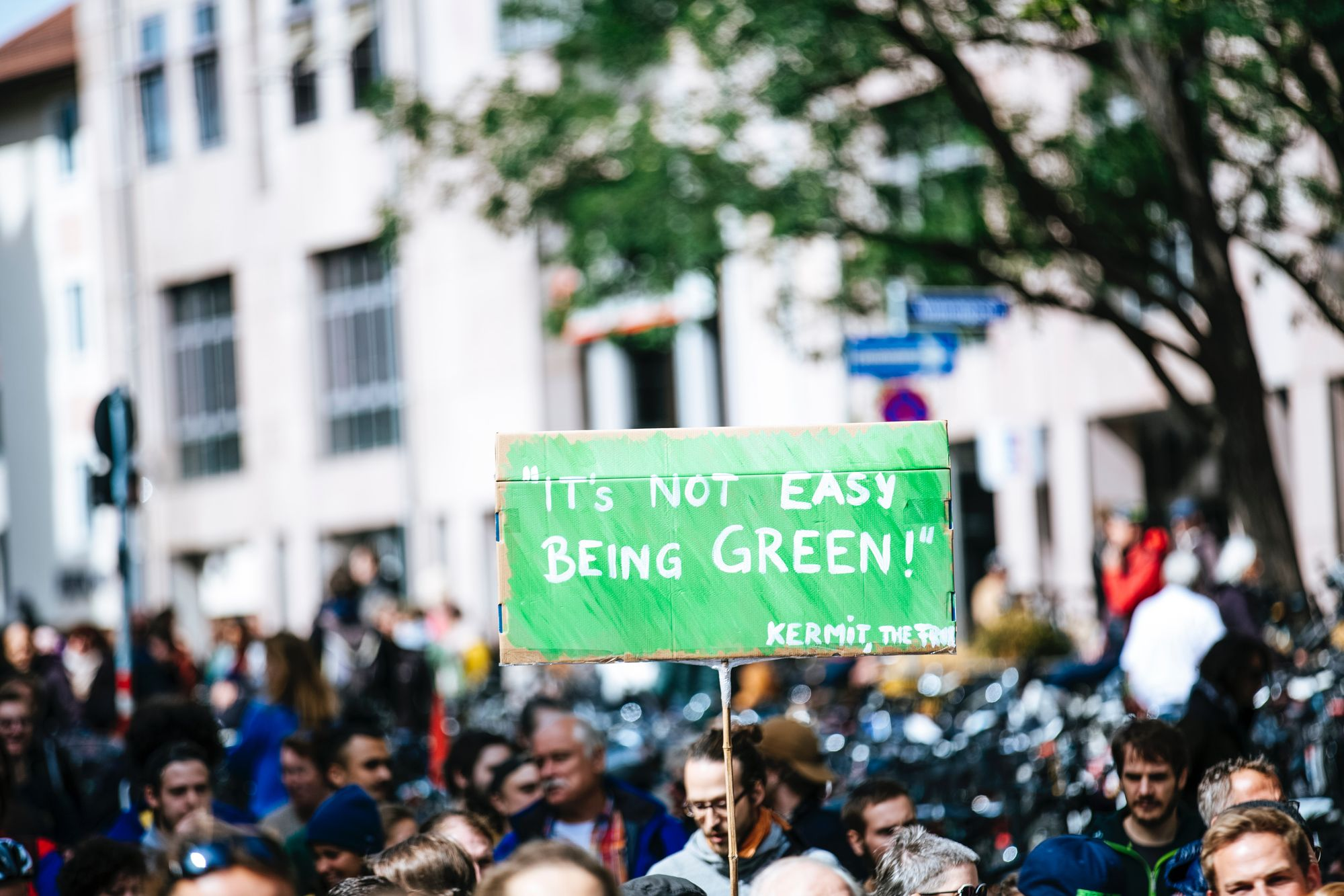 No Climate, No Deal: For Real?