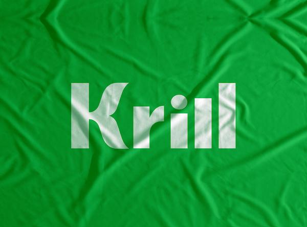 Conceptualisation of Krill - Mastering the Bull Market