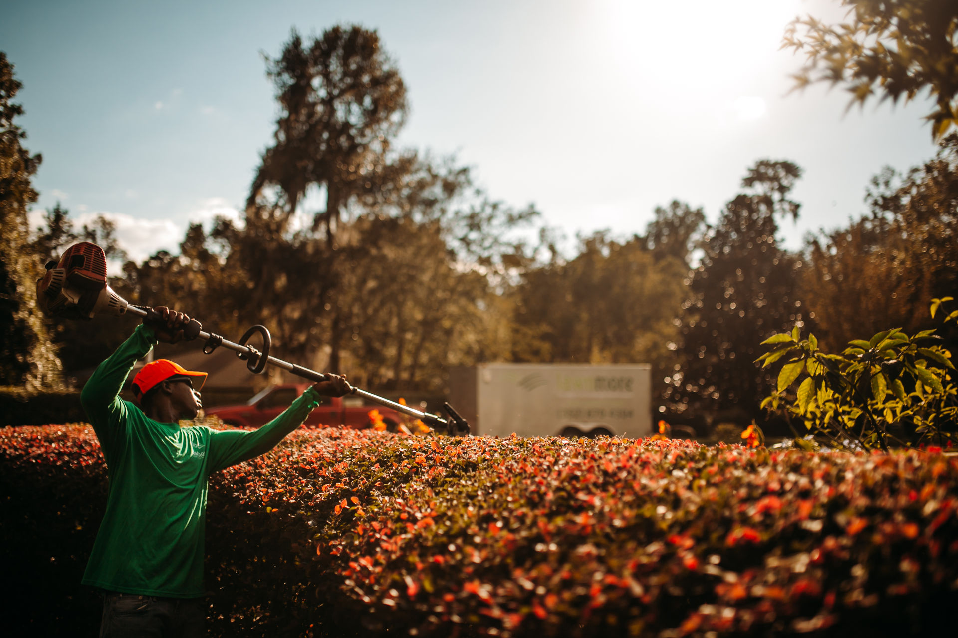 A man trimming the hedges with trimmer