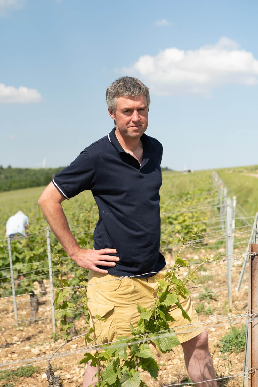 Portrait of wine producer Bersan