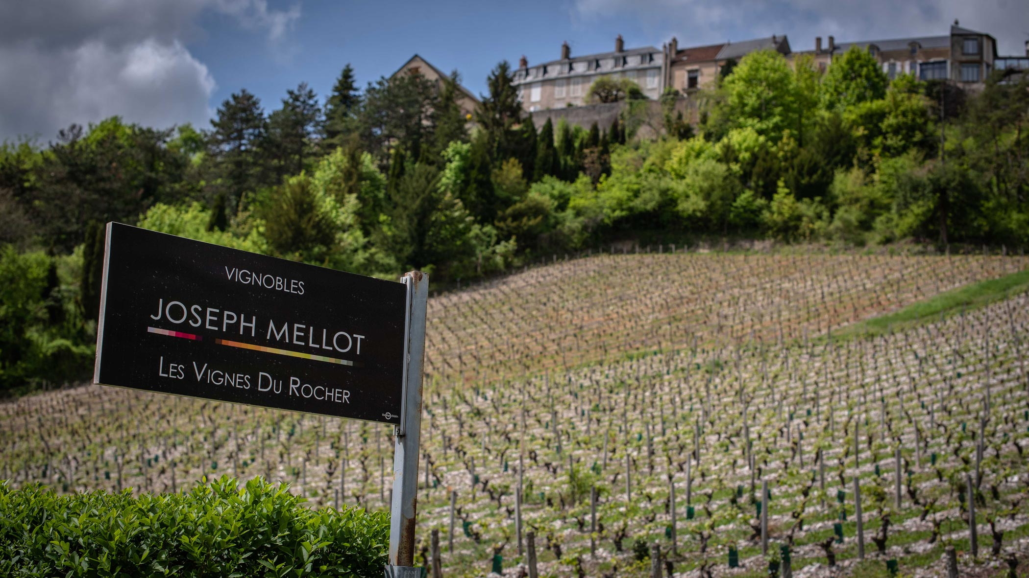 The History Of Wine Making in Sancerre.