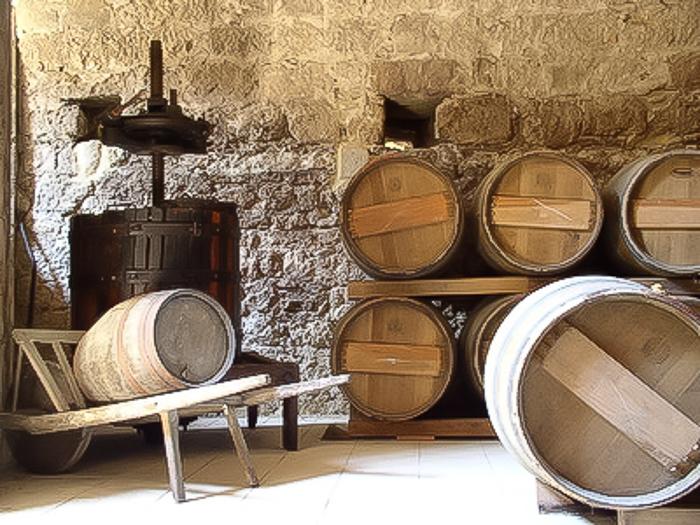 Wine barrels in wine cellar in Burgundy