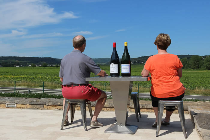 guests enjoying the view during their wine tour