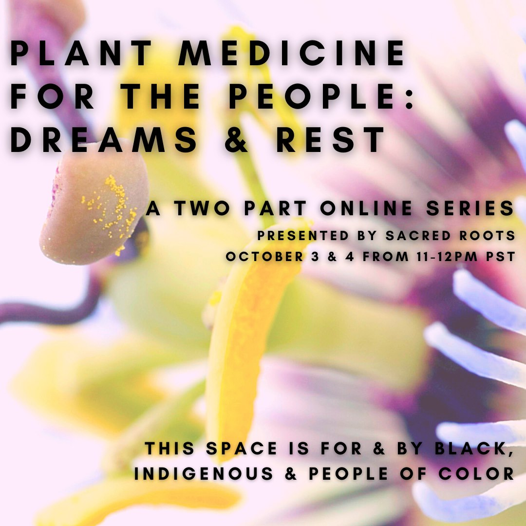 Plant Medicine for the People: Dreams & Rest