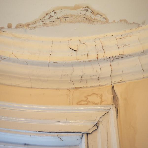 damp walls & ceilings