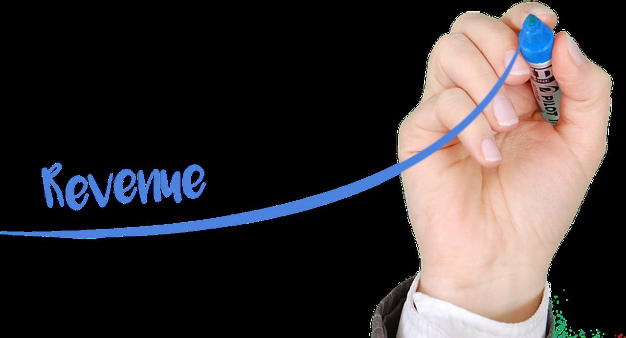 Coditation-Website-Revenue-growth-blog-1