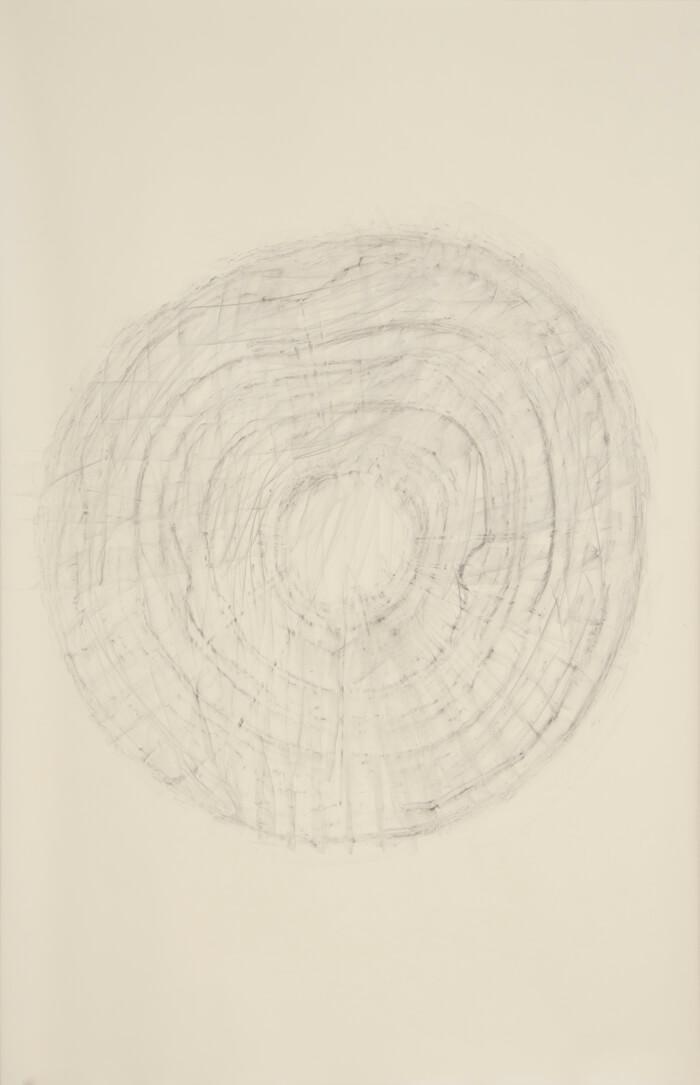 2490 Rubbing #3   graphite on paper, 40 x 26 inches, 2012