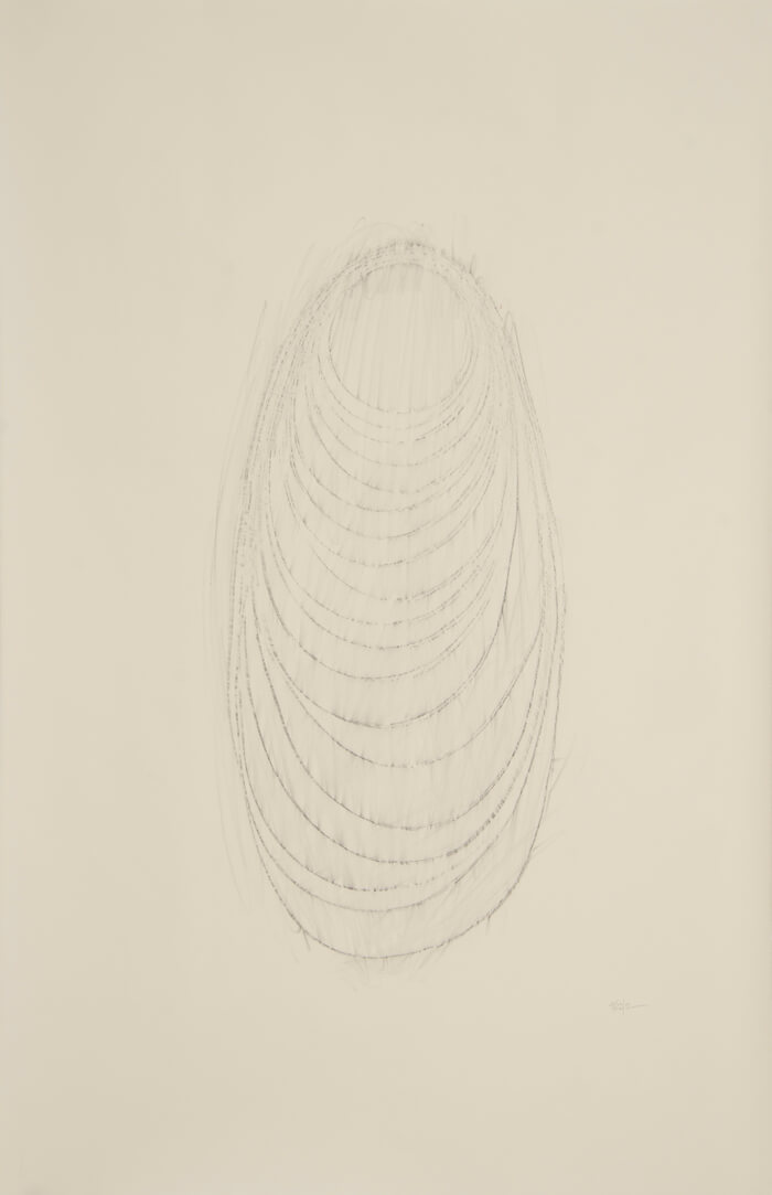 Long Line 2011 Rubbing   graphite on paper, 40 x 26 inches, 2011