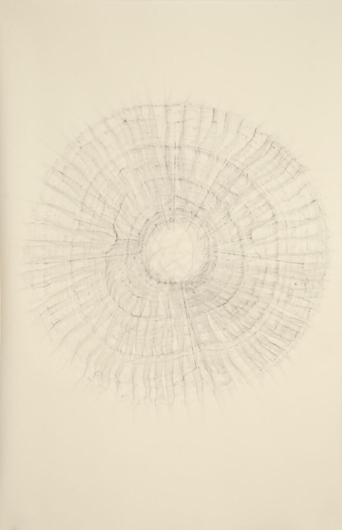 2490 Rubbing #2   graphite on paper, 40 x 26 inches, 2012