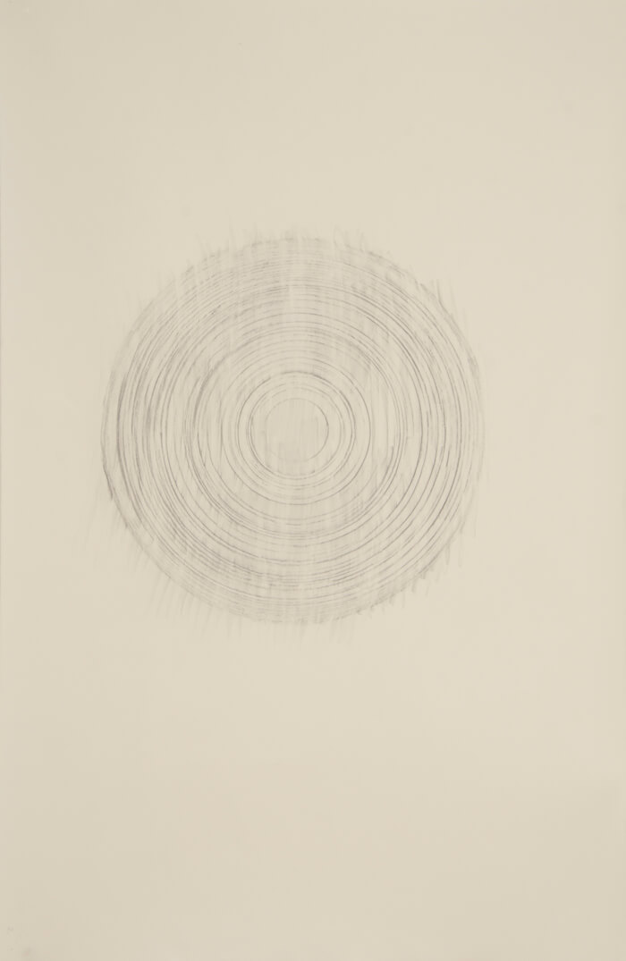 Paper Reel Rubbing HB   graphite on paper, 40 x 26 inches, 2010