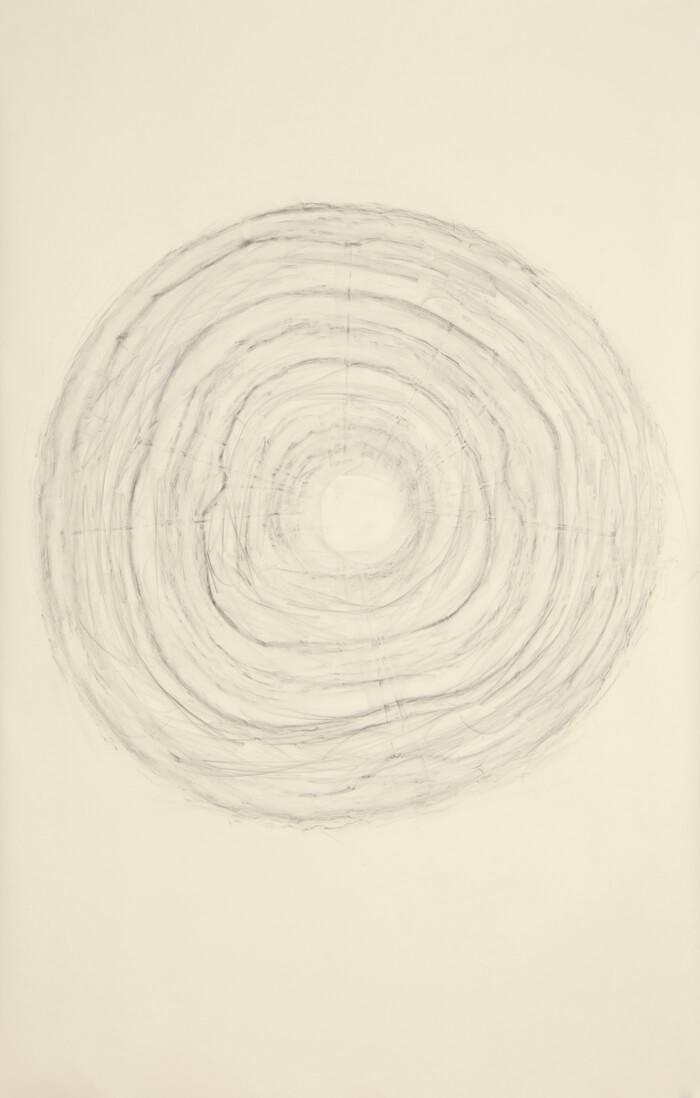 2490 Rubbing #1   graphite on paper, 40 x 26 inches, 2012
