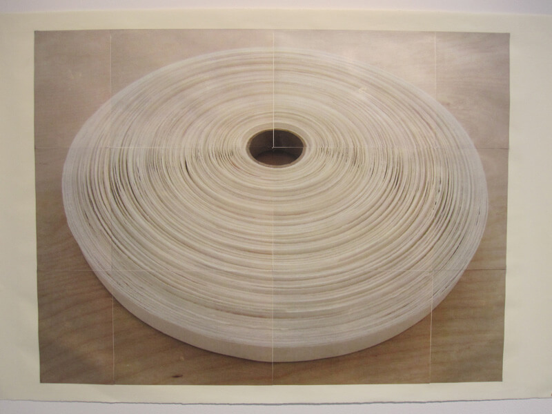 Paper Reel #2   photocopy transfer, acrylic, 40 x 26 inches, 2011