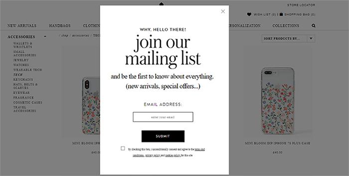 Newsletter Registration Popup