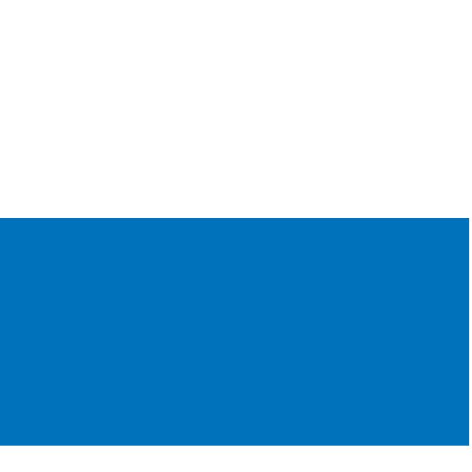 Bear Market Icon