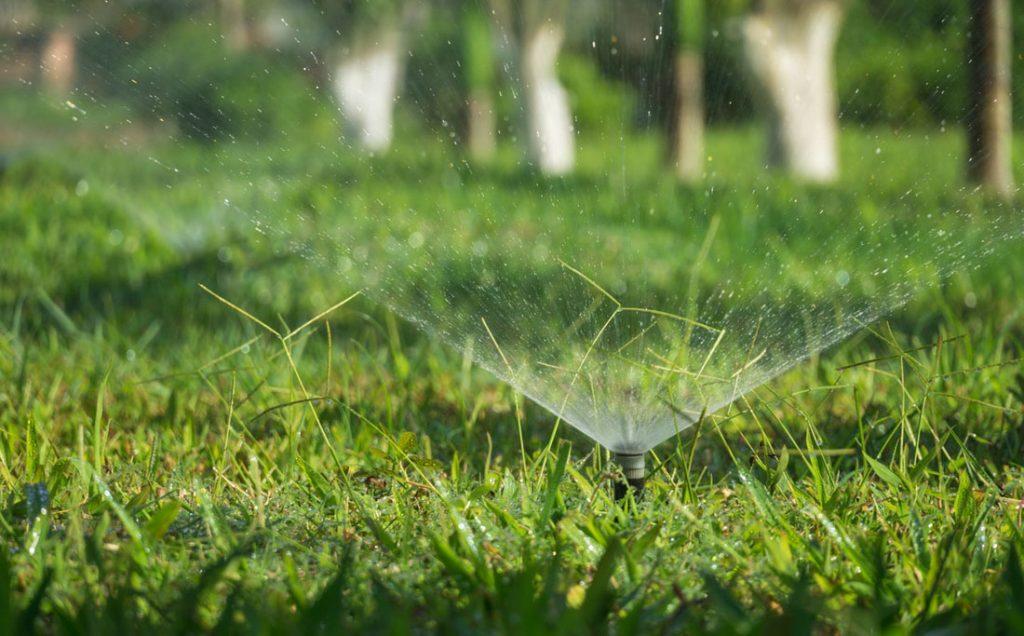 sprinkler system in action