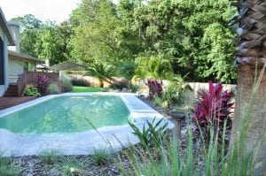 North florida landscape design with pool, Hawaiin Ti, and plant beds