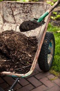 Close up of spade putting mulch in a wheelbarrow for landscape design