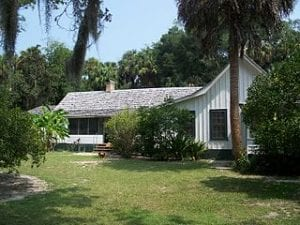 live oak trees and palm trees at Cross Creek house near Micanopy Florida