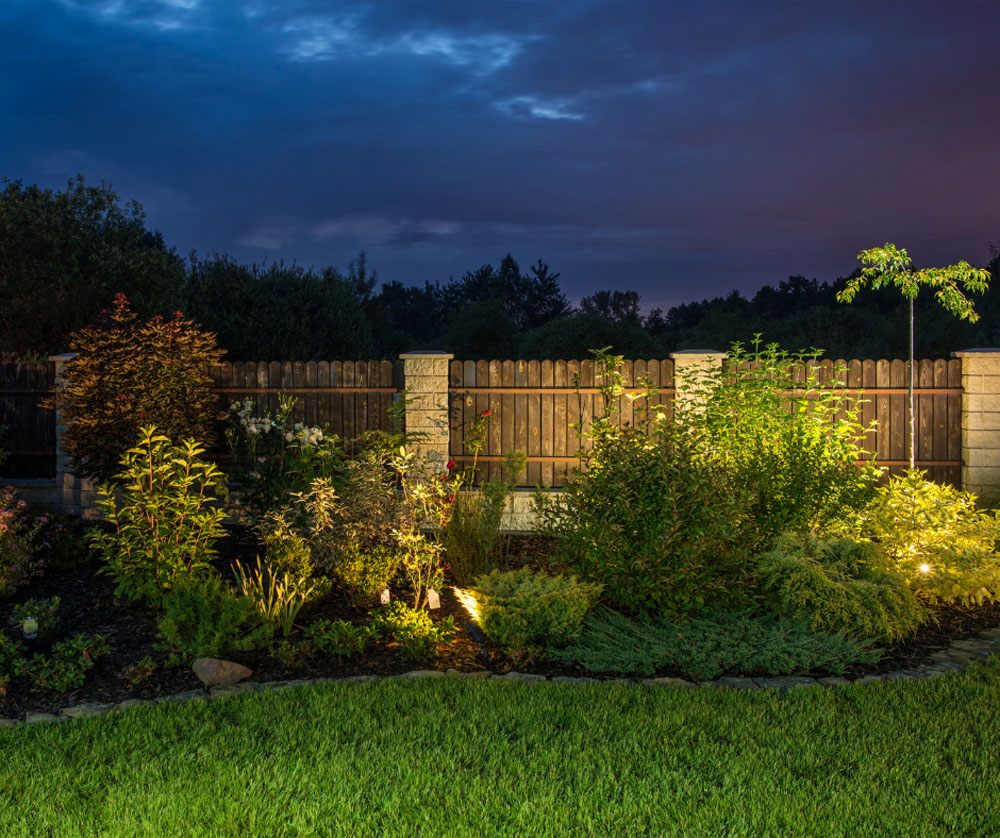 An illuminated garden with a row of plants in front of a wooden fence