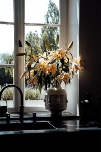 image of flowers in a window