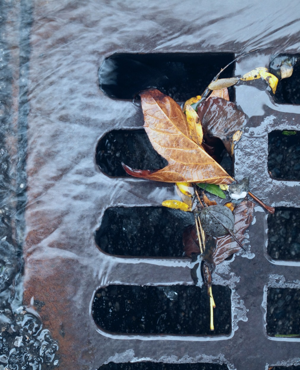 Drains Inspections and Surveying services in London