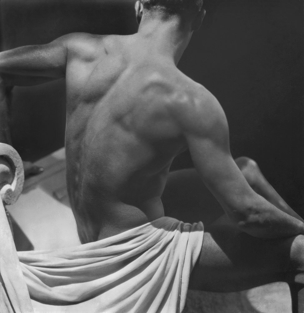 Male nude back study