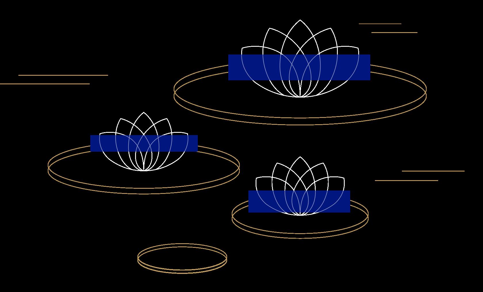 Decorative Lotus Pond
