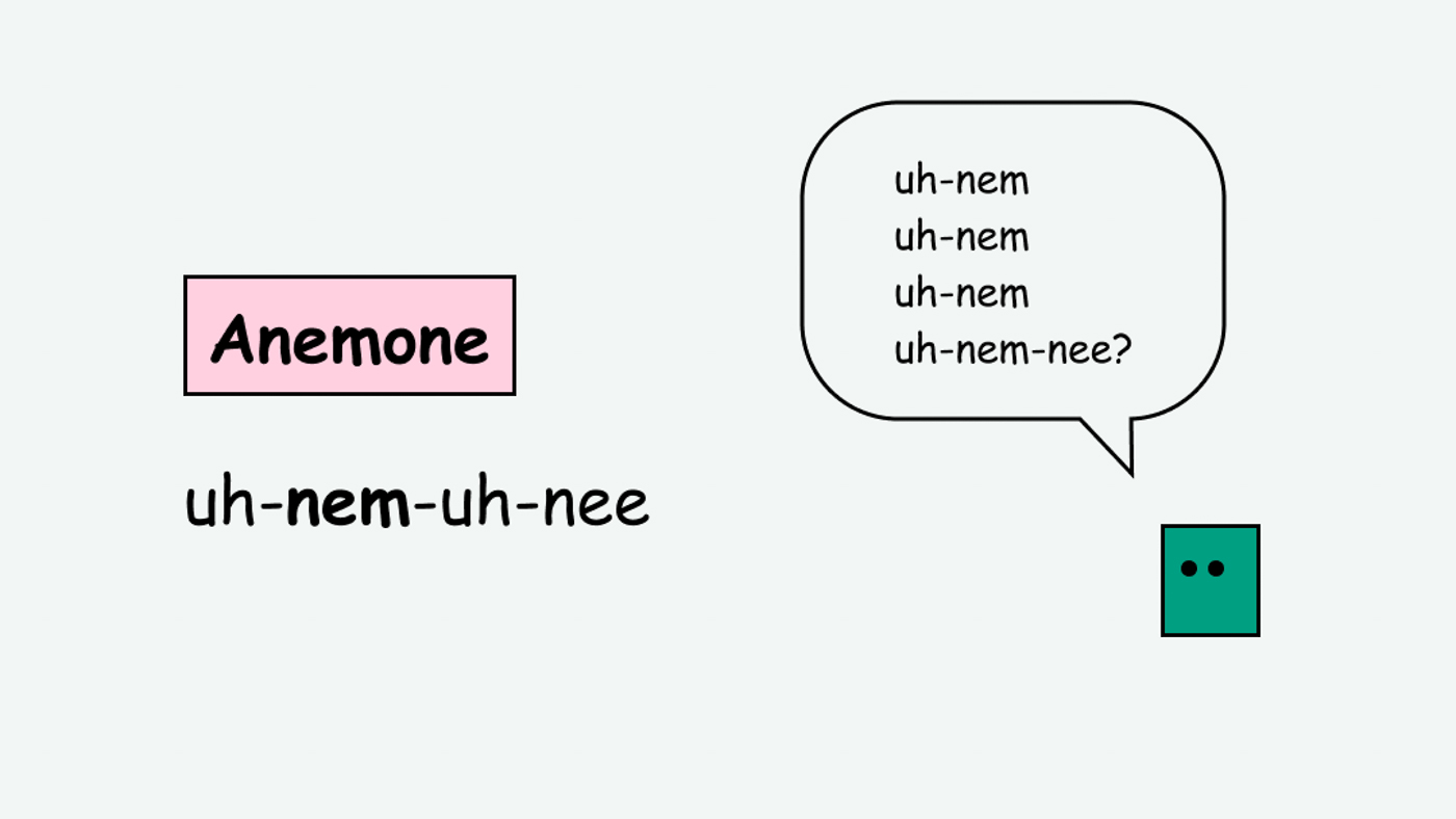 """Example of phonetic pronunciation of the word """"anemone"""""""