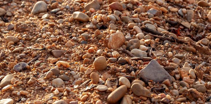一張含有 岩石, 室外, 崎嶇, 堅果 的圖片自動產生的描述
