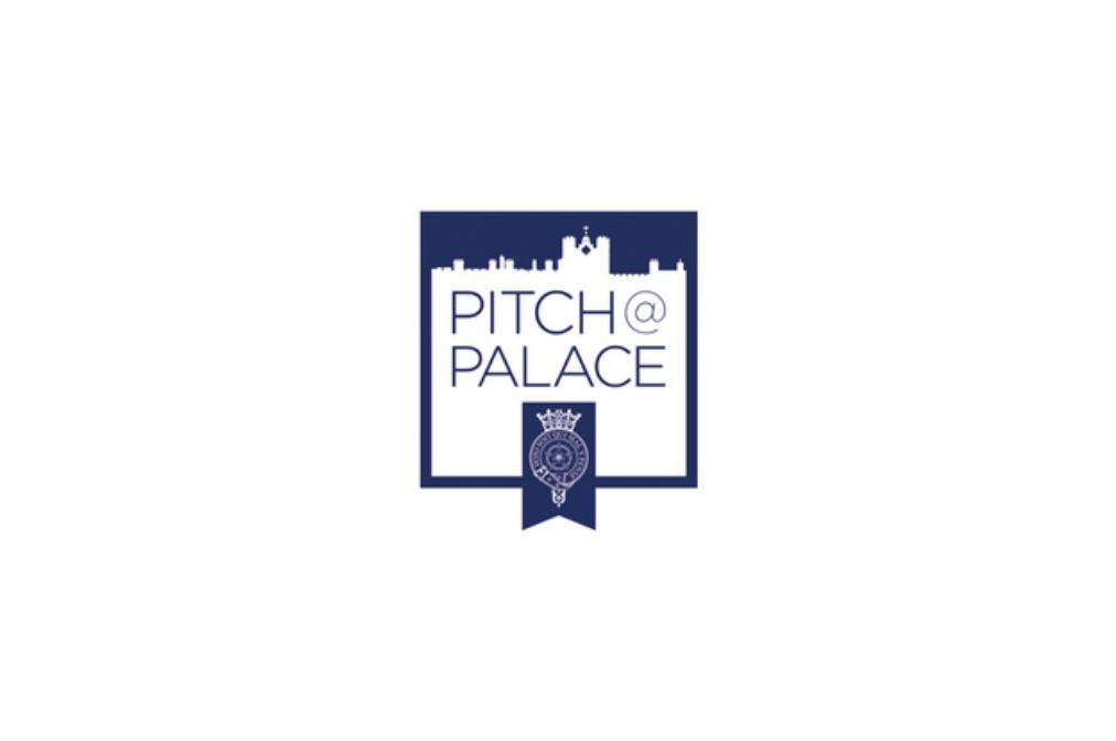 pitch-palace logo