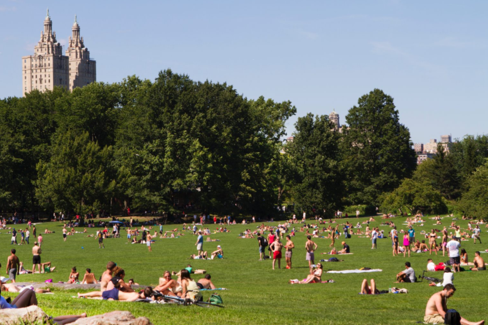 Sheep Meadow in Central Park NYC