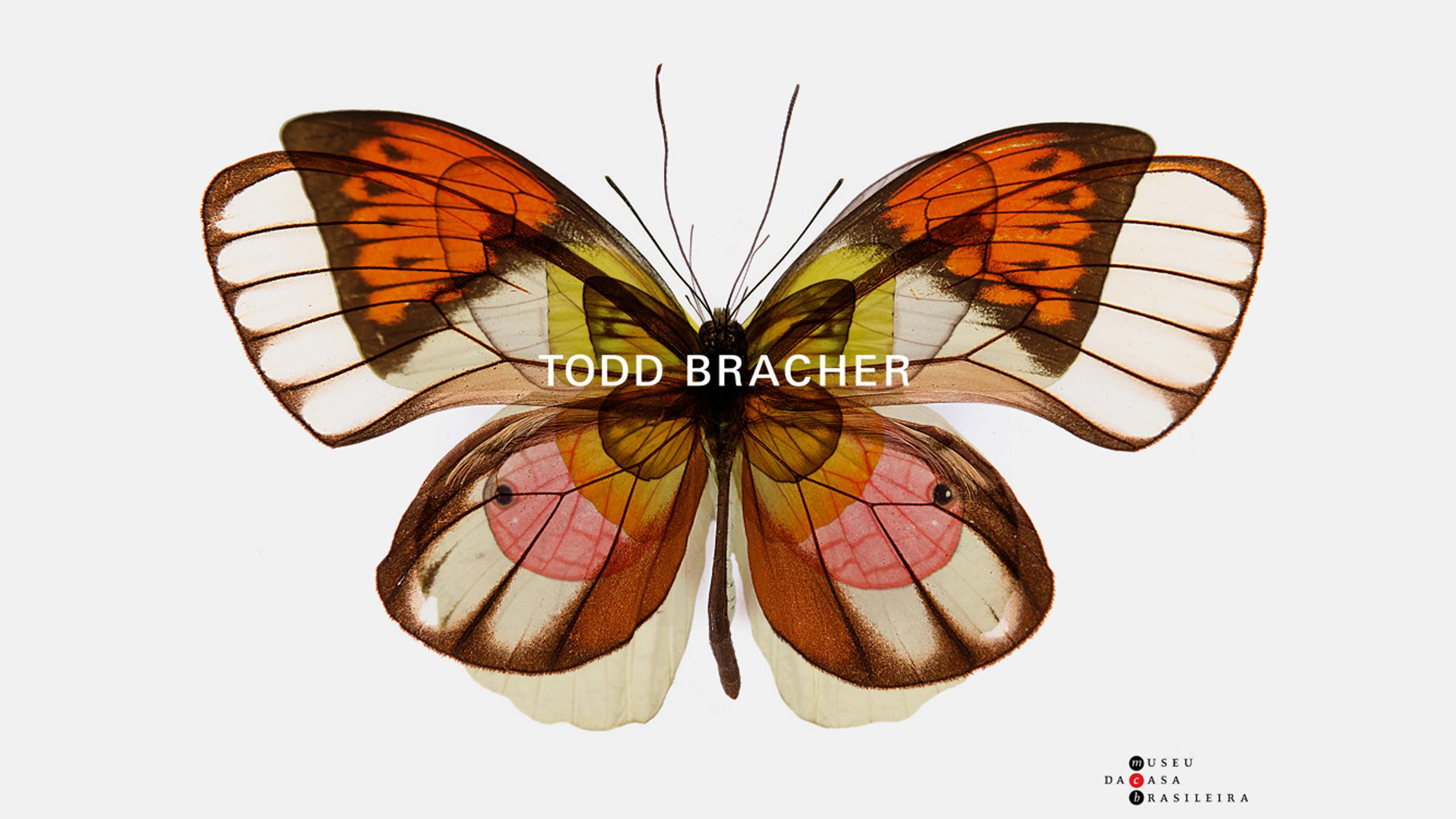 Todd Bracher Retrospective Opens in Brasil